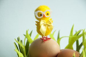 Easter Yellow chicken on Eggs
