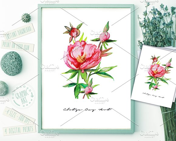 Rose Peony Watercolor Prints