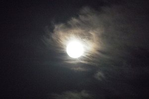 The moon in the night sky. Full moon