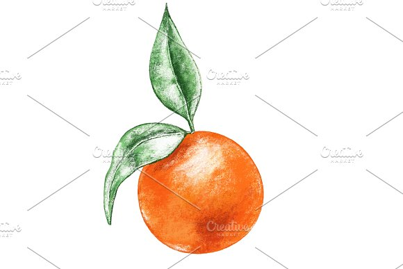 Hand Drawn Orange