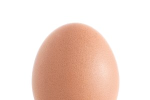 Single brown chicken egg