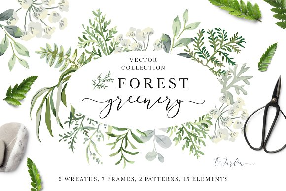 Forest Greenery Vector Collection