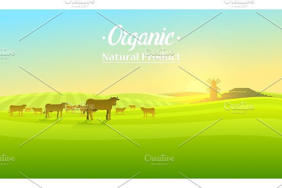 Rural Landscape And Cows Farm Agriculture Vector Illustration Poster With Meadow Countryside Retro Village For Info Graphic Websites Milk And Dairy Windmill And Hay Summer Morning Background