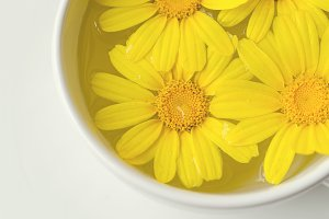 Yellow Flower, Chrysanthemum