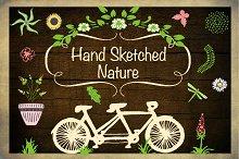 Hand Sketched Nature Illustrations