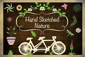 Hand Sketched Nature Illustrations