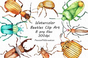 Watercolor beetles clipart