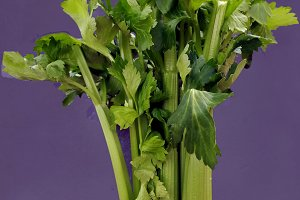 artistic celery as vegetable bouquet