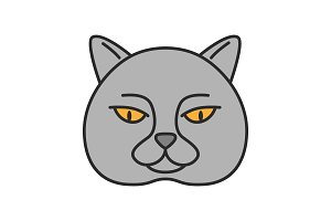 British shorthair cat color icon