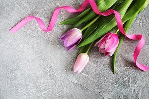 Spring tulips flowers