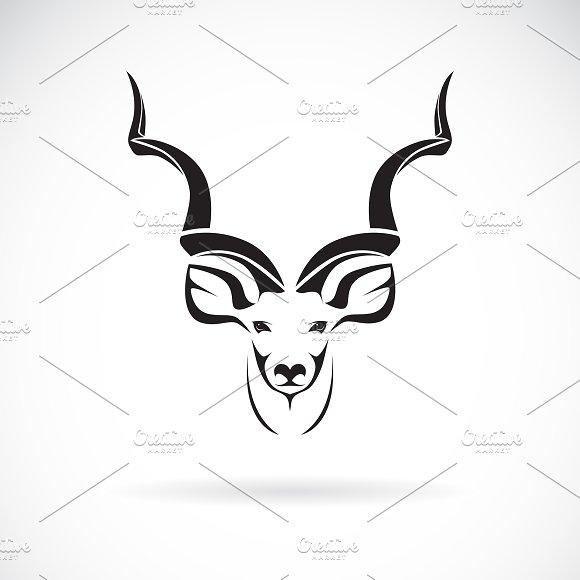 Vector Of Greater Kudu Head Design