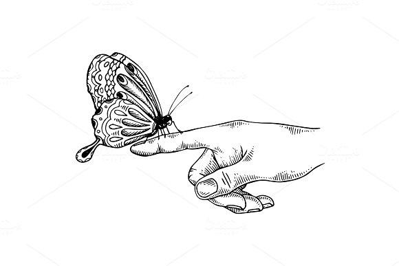 Butterfly On Finger Engraving Vector Illustration