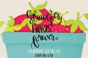 Strawberry Fields Illustrations
