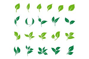 Leaves icon vector set.