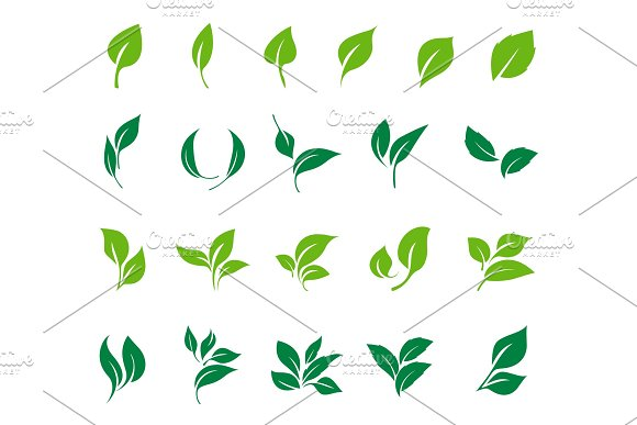 Leaves Icon Vector Set Ecology Icon Set