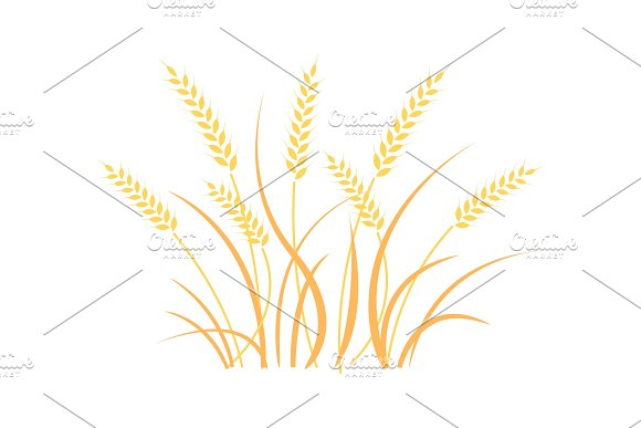 Wheat Field Background Cereals Icon Set