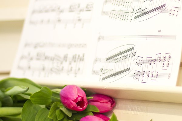 Pink tulips and notes.