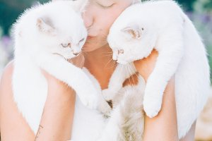 Beautiful young woman holds two white cats in her arms and kisses them in the sun light