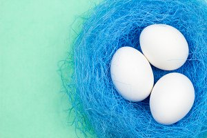Easter white eggs in blue nest on pastel green background. Close up. Flat lay style.