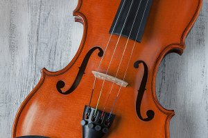 Violin close-up shot