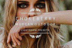 CHOKEBERRY Modern Lightroom Preset