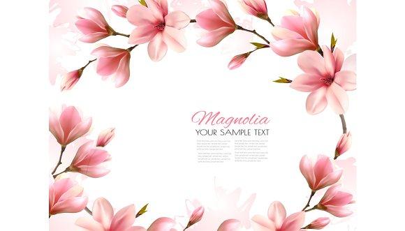 Beautiful Magnolia Branches Vector
