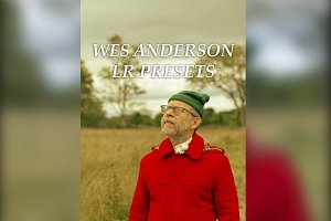Wes Anderson Lightroom Presets