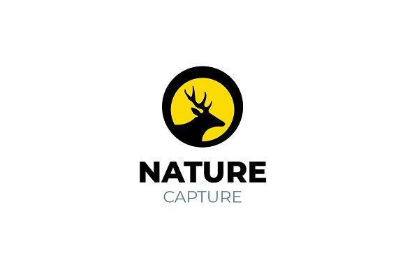 Wildlife Photography Deer Logo