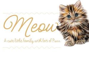 Meow Script Family