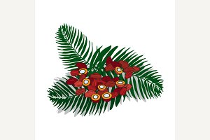Isolated clipart Palm