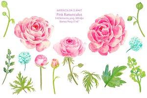 Wedding Clipart Pink Ranunculus