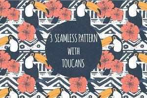 Exotic patterns with toucans