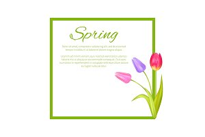Spring Poster with Text in Frame Colorful Bouquet