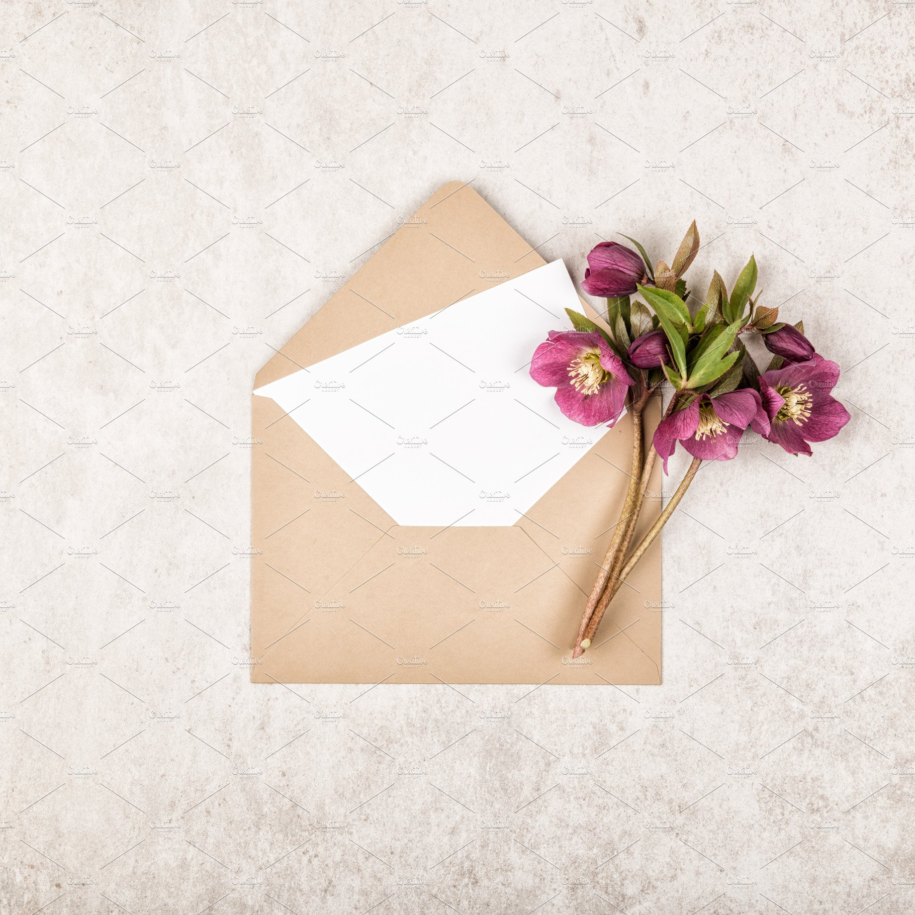 Envelope Flowers And Note Card Nature Photos Creative Market