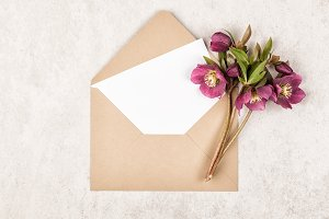 Envelope, flowers and note card