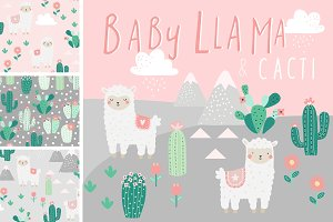 50% OFF SALE Baby Llama and Cacti