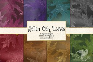 Fallen Oak Leaf Digital Paper