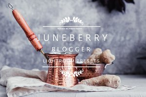 Desktop Lightroom Presets JUNEBERRY