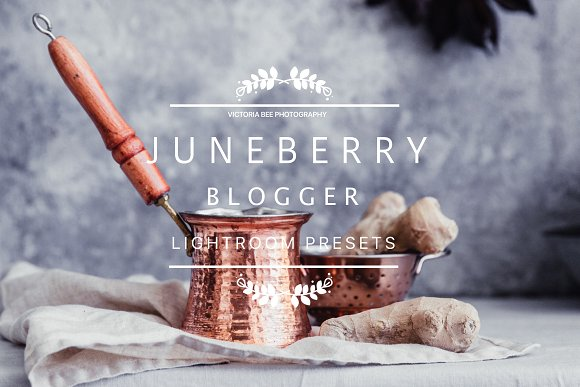 Juneberry Blogger Lightroom Presets