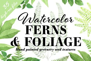Ferns & Foliage