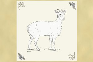Cute Goat Illustration