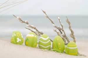 Easter decorated eggs and catkin