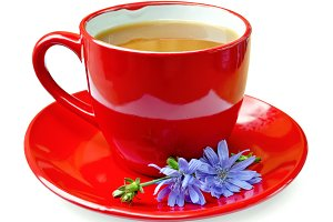 Chicory drink in red cup isolated