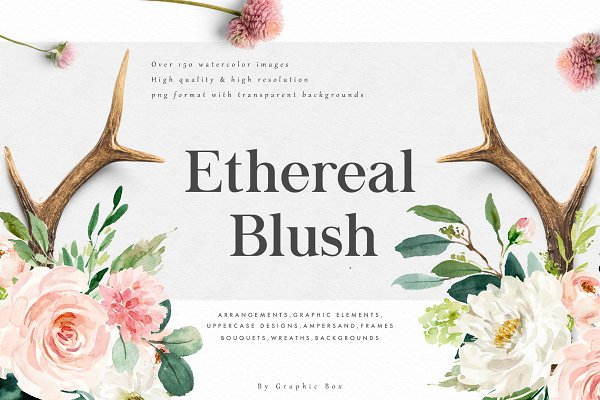 Ethereal Blush-Florals Graphic Set