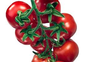 Ciliegia Regina tomato