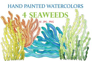 Hand Painted Watercolors 4 Seaweeds