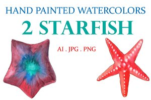 Hand Painted Watercolors 2 Starfish