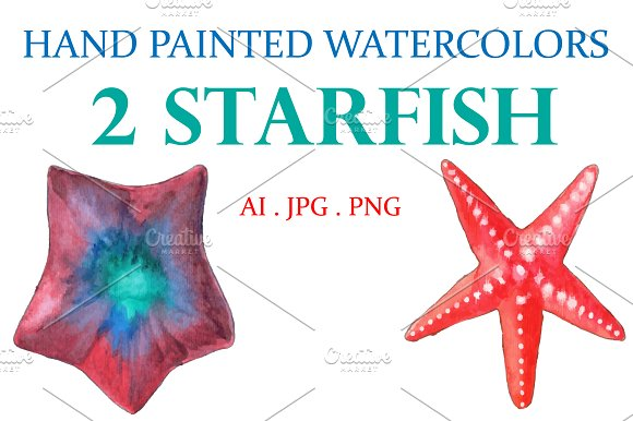 Hand Painted Watercolors 2 Starfish
