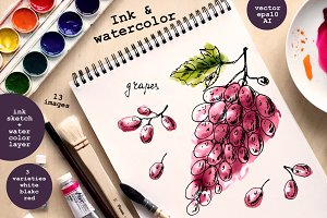 Ink and watercolor grapes