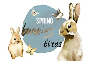 Spring Birds and Bunnies